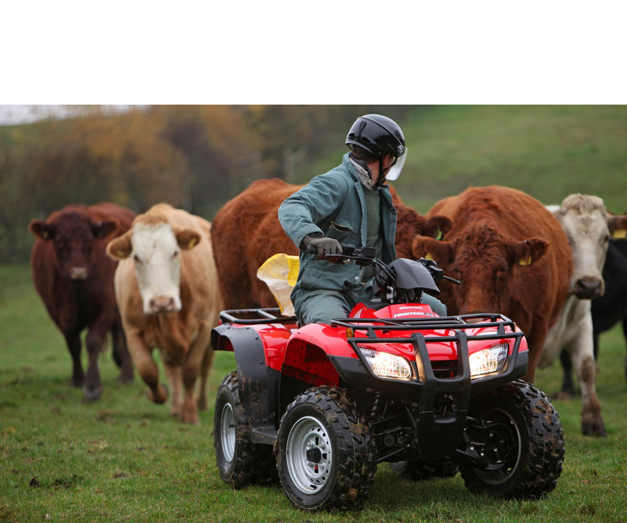 Honda-ATV-Cattle_v3