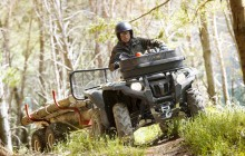 Yamaha ATV Forestry